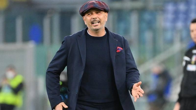 Bologna,<br /> Mihajlovic va oltre il pari: Preoccupato dal k.o. di Dominguez